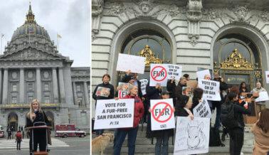 San Francisco podría ser la primera gran ciudad en prohibir las ventas de pelaje