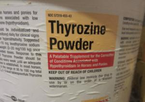 thyrozine-powder