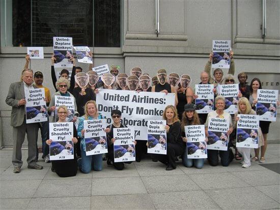 united-airlines-peta-demo