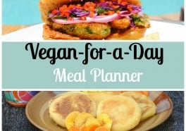 Vegan-for-a-Day Meal Planner