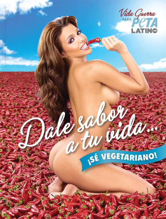 vida-guerra-peta-latino